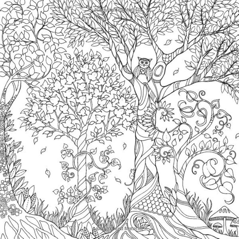 Kolorowanki Dla Dorosłych Tajemniczy Ogród Do Wydruku Część 1