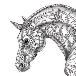 Kolorowanki Dla Dorosłych Konie Do Wydruku Za Darmo
