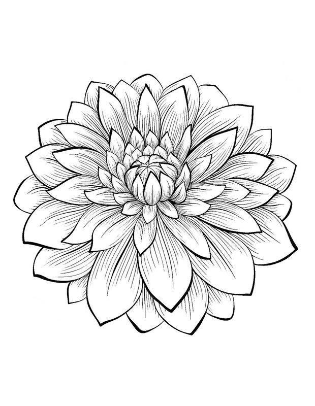Kolorowanki Dla Dorosłych Kwiaty Do Wydruku Część 3