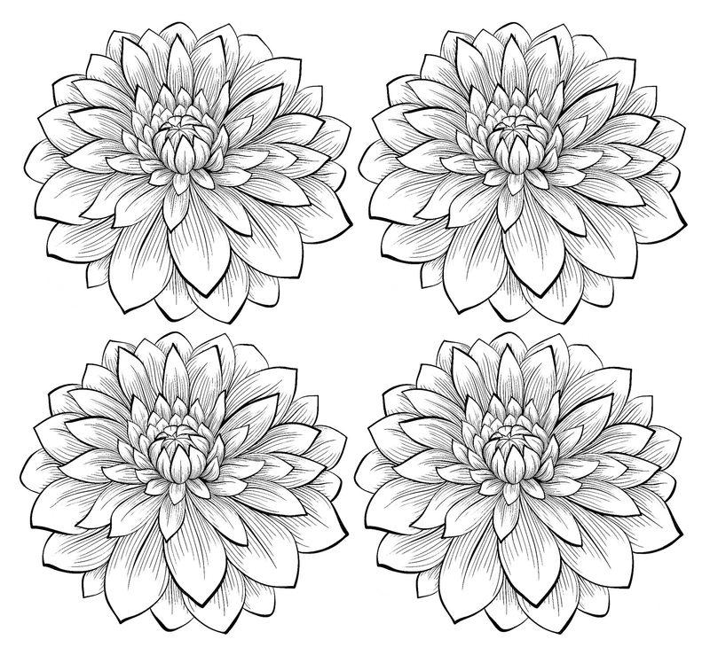 Kolorowanki Dla Dorosłych Kwiaty Do Wydruku Część 5
