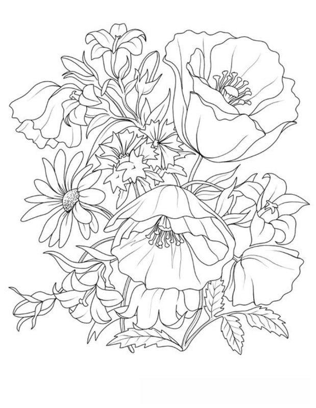 Kolorowanki Dla Dorosłych Rośliny Do Wydruku Część 1