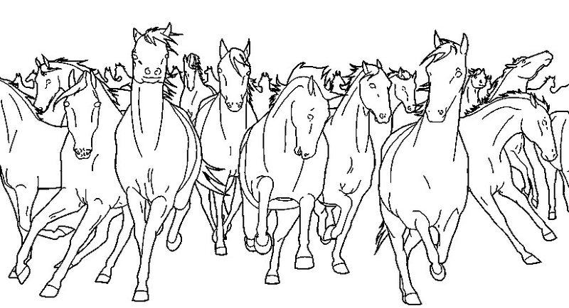 Paarden Kleurplaat Online Kolorowanki Dla Dorosłych Konie Do Wydruku Część 3