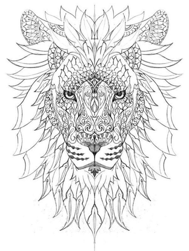Kolorowanki Dla Dorosłych Lwy Do Wydruku Część 1