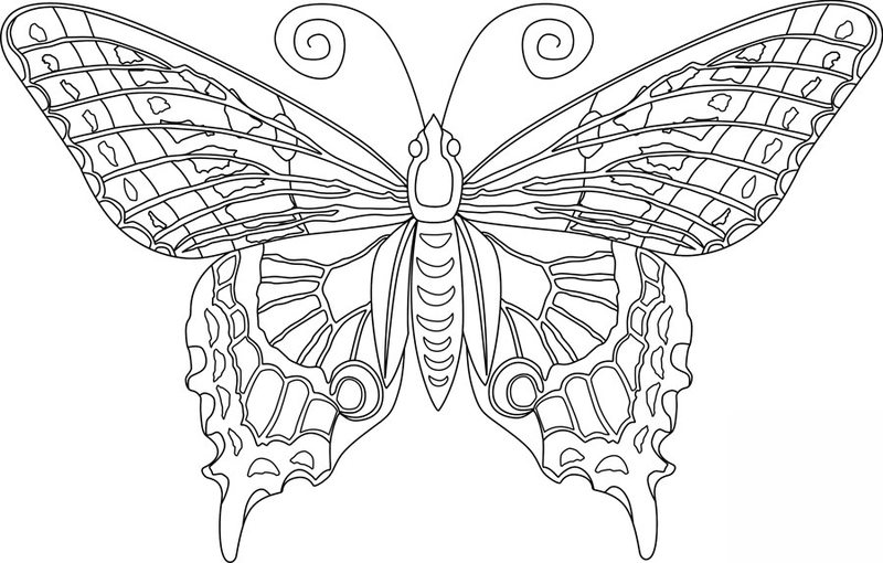 Kolorowanki dla doros ych Motyle