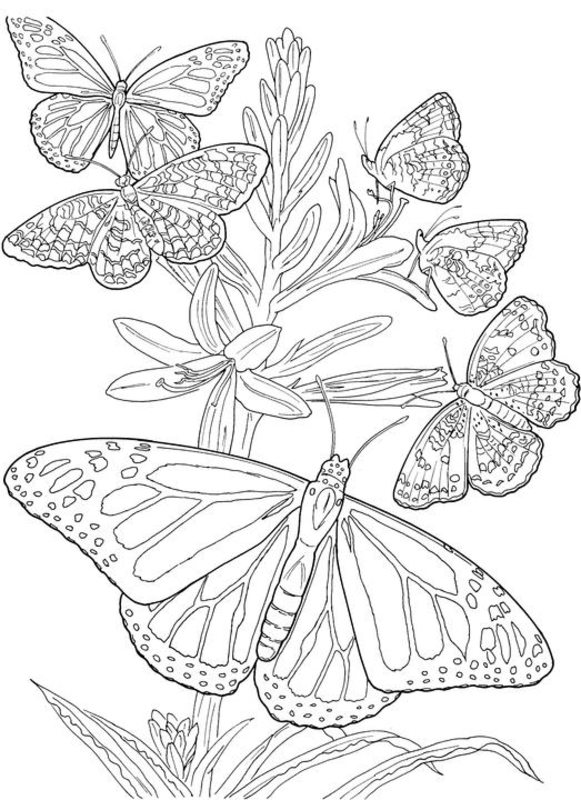 spring coloring pages detailed words - photo#45