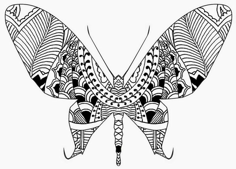 Kleurplaten Dieren Vlinders.Kleurplaten Dieren Vlinders Vogel Malvorlagen Malvorlagen1001 De