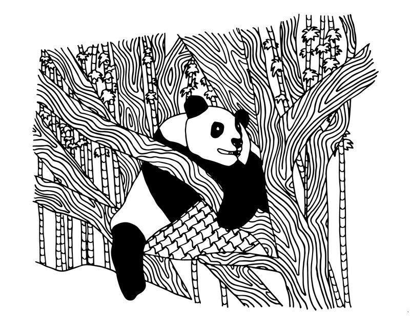 Kolorowanki dla doros ych Panda